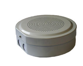 Voice Alarm cabinet speaker BS5839 SAFE561IPT